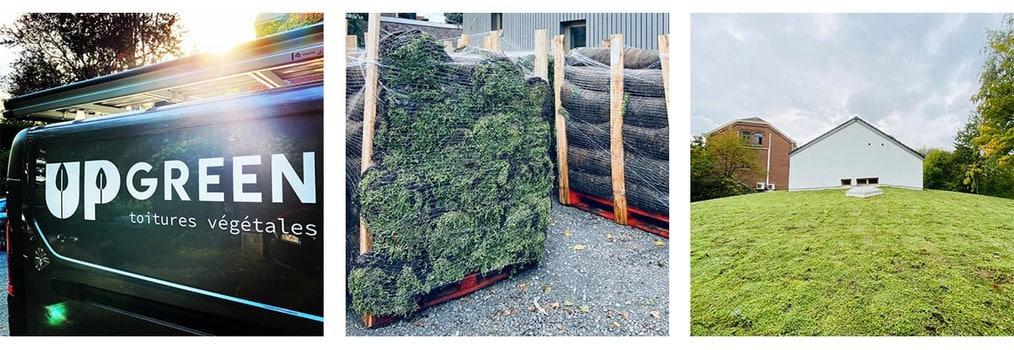 Entreprise d'installation et d'entretien de toit végétal à Liège - UpGreen