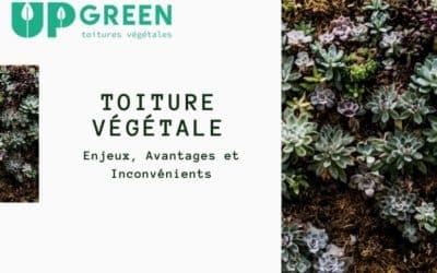 Toiture végétale : avantages et inconvénients