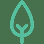 Le toit végétal UpGreen permet le développement de la biodiversité