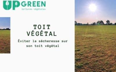 Toiture végétale et sécheresse, pas de panique !