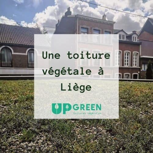 Une toiture végétale à Liège