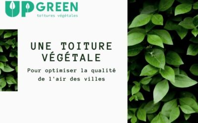 Une toiture végétale pour optimiser la qualité de l'air des villes