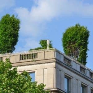 Entreprise de toiture végétalisée Belgique