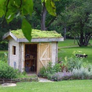 Entreprise de toiture végétalisée - Installation de toiture végétale