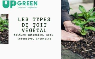 Les différentes sortes de toit végétal