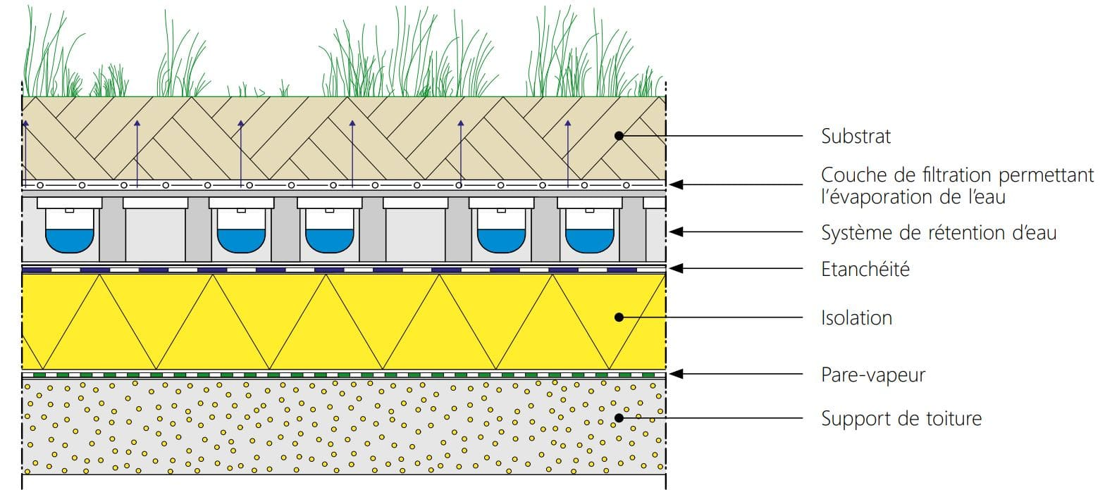 Toiture plate végétale rétention d'eau