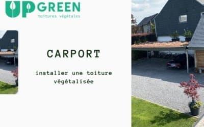 Installer une toiture végétale sur son carport