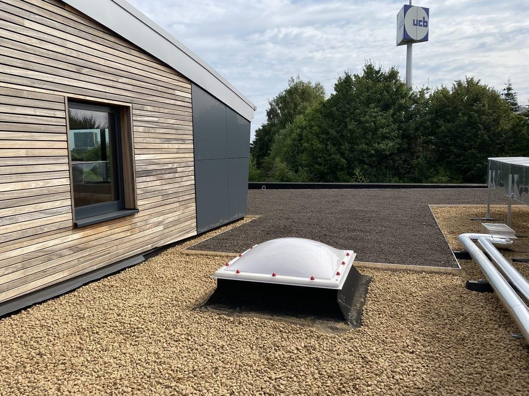 Réalisation d'une toiture verte à Liège