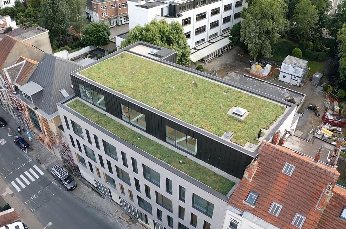 Toiture végétalisée building Belgique